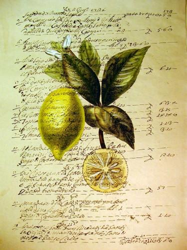 Limone2.jpg