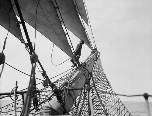 avventure della domenica pomeriggio: una grande nave sfida il te