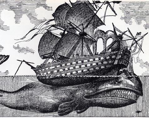 balena1.jpg