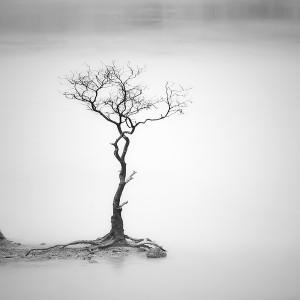 minimalism-by-hengki-koentjoro.JPG-6